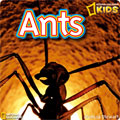 National Geographic Kids - Ants