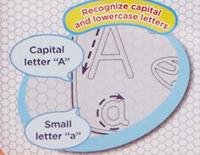 Helps your child learn capital and lower case letters, vocabulary and spelling while tracing letters