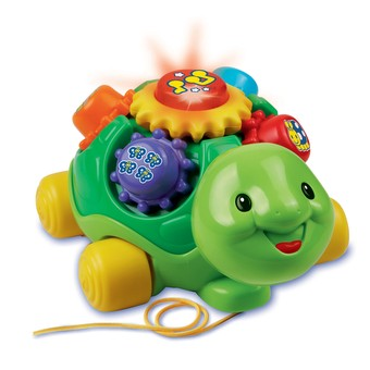 Roll & Learn Turtle™