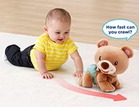 Explore and learn crawling cub foods